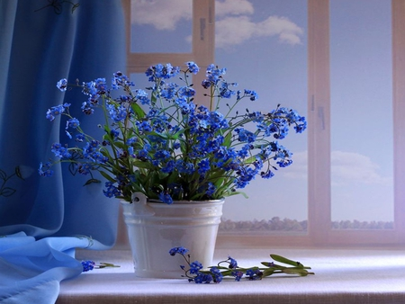 Blue Flowers - buttons, blue flowers, with love, pretty, still live, beautiful, bucket, pail, still life, photography, flowers, beauty, tin, tender, for you, blue, art, lovely, window, romantic, view, life, romance, flower, store, nature, petals