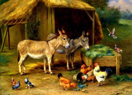 Farm Friends - rocks, feeder, birds, roosters, shed, thatched roof, trees, bucket, farm, doves, plants, pasture, donkeys, chickens, burrows
