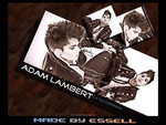 adam lambert my man