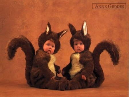 Baby squirrels - funny, baby, sweet, squirrels