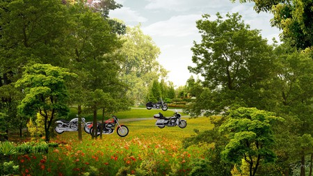 Harley Park - grass, motorycles, flowers, bikes, park, hogs, trees, sky