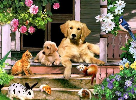 Cute friends * For Jeri (mememe1) - porche, rabbit, cat, bird, flower, kitten, cardinal, puppy, dog