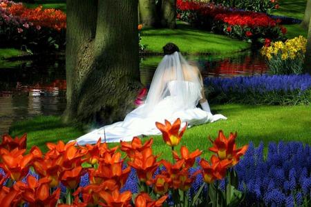 Download runaway bride online rating