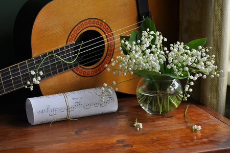 still life - pretty, lily of the valley, notes, vase, beautiful, old, still life, photography, nice, gentle, flowers, beauty, harmony, photo, lovely, music, elegantly, water, cool, guitar, bouquet, flower