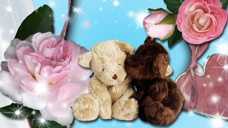 Roses And Teddy Bears Flowers Nature Background Wallpapers On