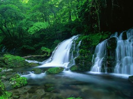 Green forest falls waterfalls nature background - Waterfalls desktop wallpaper forest falls ...