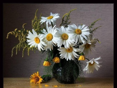 Daisies still life - white and yellow, vase, yellow, flowers, daisies