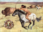 Buffalo Hunting on Appaloosa F2