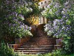 Stairway Blossoms
