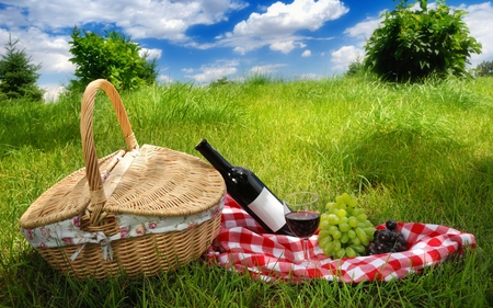 Picnic - baskets, pretty, grass, bottle, liaisons, clouds, picnic, food and wine, fruit, lovers, picnic basket, bush, beauty, lovely, romance, food, rendezvous, time, relax, sky, picnics, tablecloth, trees, bottle of wine, glass, field, colorful, sunny, beautiful, grapes, private, green, fields, horizons, blue, amazing, romantic, view, wine, colors, spring, tree, basket, peaceful, summer, day, nature, lawn, meadow