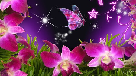 Orchids Pink - flowers, butterfly, firefox persona, purple, stars, vines, orchid, bright pink