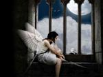 Fallen Angel.