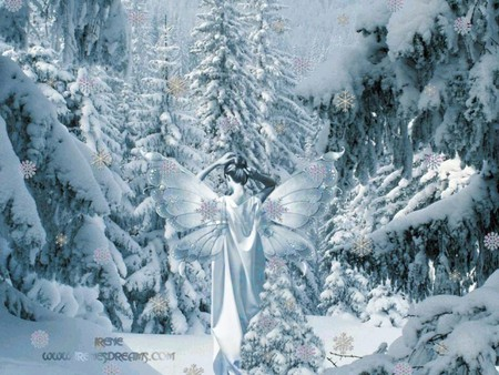 Fairy Of The Winter Fantasy Abstract Background Wallpapers On