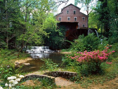 Falls Mill Belvidere Tennessee - house, tennessee, water, watermill, mill, flower, forests