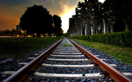 Railroad Tracks - railroad, sunset, trees, alley, track