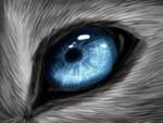 Wols beautiful blue eye