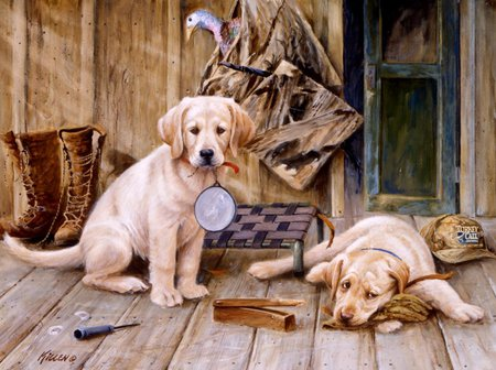 hunting dog backgrounds