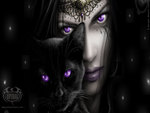 Purple Cats Eyes