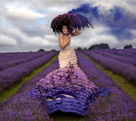 Lavender - photography, lavender, flower, beauty, dress, field, girl, relaxing, pretty, alone, female, sensual, lady, umbrella