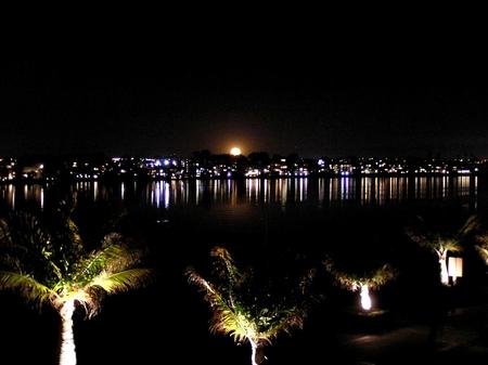 Beach at night with beautiful moon - palmtrees, city, lights, moon, night, sea, beach