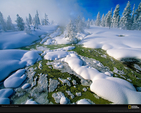 Melting Snow - grass, white, cold, nature, snow, foggy, winter, ice, green, mountain
