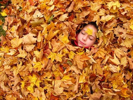 small Autumn dreams - autumn