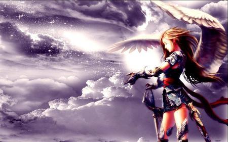 Beautiful Angel Warrior
