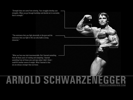 Arnold Schwarzenegger - arnold schwarzenegger, bodybuidling, muscle