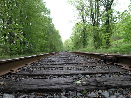 Rail Road Tracks in Portland PA - railroad, train, summer, tracks