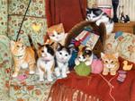 Knitting for Kittens F2