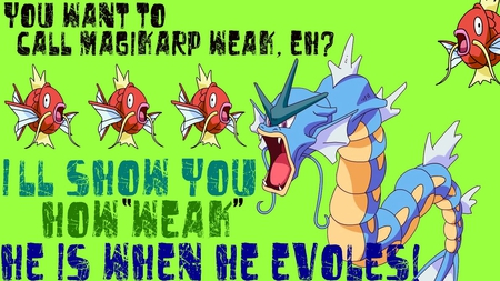 You Want To Call Magikarp Weak, Eh? - evoles, weak, into, magikarp, gyardos