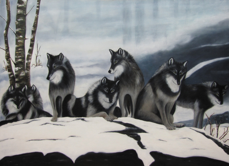 Wolf pack - seven, snow, wolves, pack