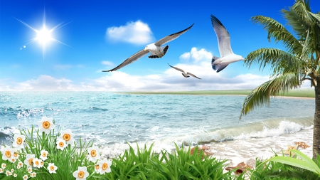 By The Sea By The Beautiful Sea Beaches Nature Background Wallpapers On Desktop Nexus Image 718988