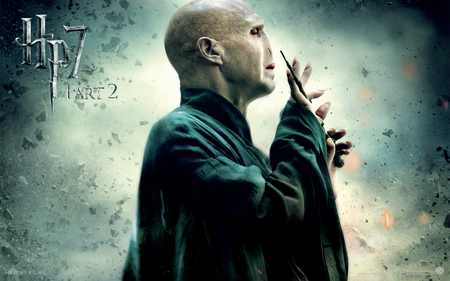 Voldemort Hp7 Part 2 - hp7 part 2, ron, harry potter, hermione, voldemort