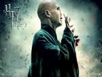 Voldemort Hp7 Part 2
