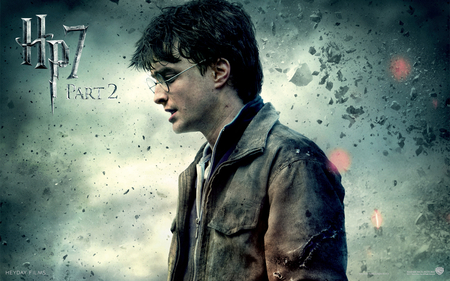 Harry Hp7 Part 2 - hp7 part 2, ron, harry potter, hermione, voldemort