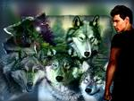 Taylor Launter and the Wolves