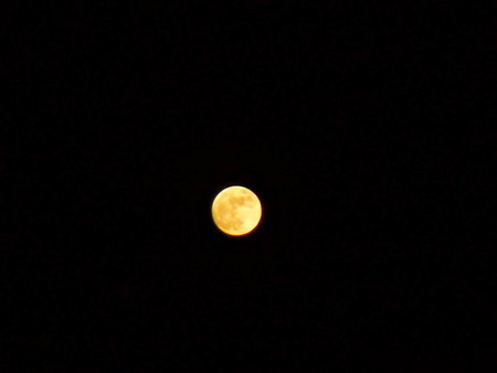 moon - moon, orange moon, full moon, perfect, black, night