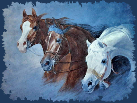 Triple Threat Arabians - Horses F1 - edwards, art, gladys brown edwards, equine, abu farwa, gladys edwards, artwork, bask, naborr, painting, arabian