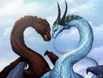 2 dragons in love