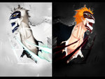 Vizard Ichigo and Vizard Hichigo