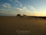 Sunset in dunes of Curonia