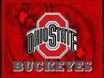 OHIO STATE BUCKEYES WP