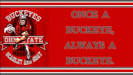 ONCE A BUCKEYE, ALWAYS A BUCKEYE. - football, ohio, state, buckeye