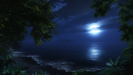 moonlit beach - pretty, ocean, waves, trees, sky, clouds, beach, moon, moonlight, beauty, nature, evening, nightime, tropical, blue, night