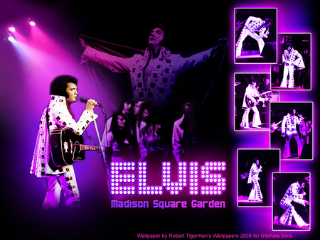 Elvis Presley Music Entertainment Background Wallpapers On Desktop Nexus Image 74976