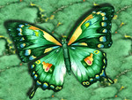 Abstract Green Butterfly F2