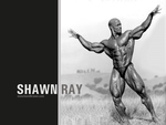 shawn ray