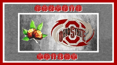 BUCKEYE NATION - ohio, state, buckeye, nation