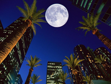 Simple Wallpaper Night Los Angeles - 742515-bigthumbnail  Pic-46362.jpg